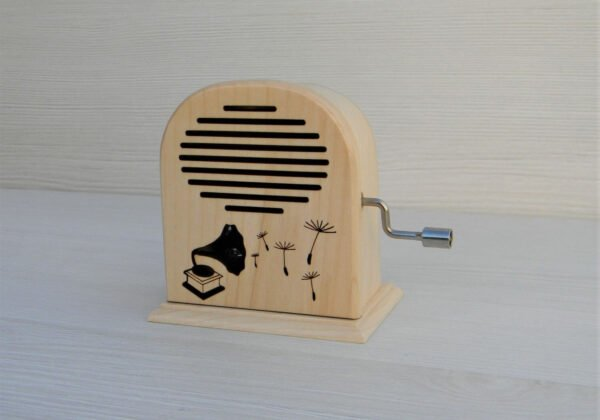 que-sera-cutiuta-radio